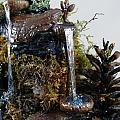 The Falls by Debra LaPointe