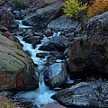 The Falls Of Fall by Jim Garrison