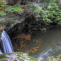 The Falls Of Mill Creek Park by David Dufresne