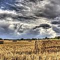 The Farm In The Summer by David Pyatt