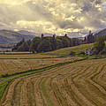 The Fields Of Scotland - Landscape - Sunset by Jason Politte