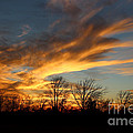 The Fiery Sky by Kathy  White