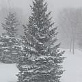 The First Snow Of Christmas by Derek O'Gorman