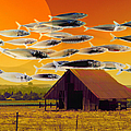 The Fish Farm 5d24404 Square by Wingsdomain Art and Photography