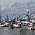 The Fishing Boats At Westport by Tom Janca