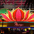 The Flamingo Hotel And Casino Las Vegas by Clint Buhler