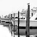 The Fleet Awaits - Outer Banks by Dan Carmichael