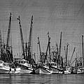 The Fleet by Debra and Dave Vanderlaan
