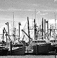 The Fleet by Joseph Perno