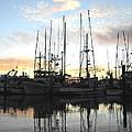 The Fleet by Larry  Daeumler
