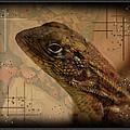 The Florida Lizard by Andrew Sliwinski
