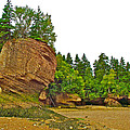 The Flowerpots At Hopewell Rocks On Bay Of Fundy-new Brunswick by Ruth Hager
