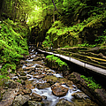 The Flume With Flowing Water by Noppawat Tom Charoensinphon