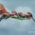 The Flying Pair by Deborah Benoit