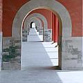 The Forbidden City by Shaun Higson