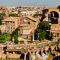 The Forum From The Palatine by Weston Westmoreland