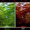 The Four Seasons- Featured In Comfortable Art And Newbies Groups by Ericamaxine Price