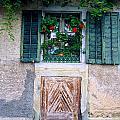 The Front Door by Matt Swinden