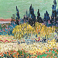 The Garden At Arles, Detail by Vincent van Gogh