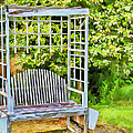 The Garden Bench In Spring  by Cathy Anderson