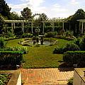 The Garden by Peter LaPlaca