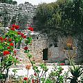 The Garden Tomb. East Jerusalem. by Daniel Blatt