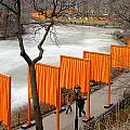 The Gates In Central Park by Rene Sheret