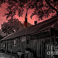 The General Store In Luckenbach Texas by Susanne Van Hulst