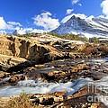 The Glacier Rush by Adam Jewell