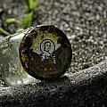 The Glass Jar From The Tsunami by Image Takers Photography LLC - Carol Haddon