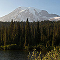 The Glow Of Mount Rainier by Tikvah's Hope