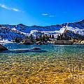 The Gold Lake Bottom by Mitch Johanson