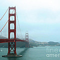 The Golden Gate Bridge And San Francisco Bay by Connie Fox