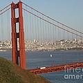 The Golden Gate by Jacklyn Duryea Fraizer