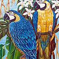 The Golden Macaw by To-Tam Gerwe