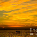 The Golden Sky That Mesmerize  by Rene Triay Photography