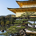 The Golden Temple Of Kyoto Japan by Natural Focal Point Photography