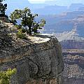 The Grand Canyon by Laurie Paci