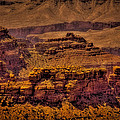 The Grand Canyon Vintage Americana Viii by David Patterson