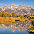 The Grand Tetons At Schwabacher Landing Grand Teton National Park by Fred Stearns