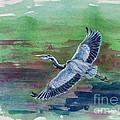 The Great Blue Heron by Zaira Dzhaubaeva