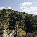 The Great Wall 649 by Terri Winkler