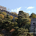 The Great Wall 673 by Terri Winkler