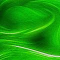 The Green Factor by Carlos Vieira