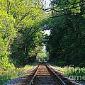 The Green Line Railroad Track Art by Reid Callaway