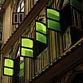 The Green Windows by Shaun Higson