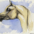 The Grey Arabian Horse 12 by Angel Ciesniarska