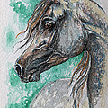 The Grey Arabian Horse 13 by Angel Ciesniarska