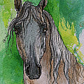 The Grey Arabian Horse 17 by Angel Ciesniarska