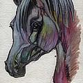 The Grey Horse Drawing 1 by Angel Ciesniarska